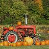 Tractor in Pumkin Field<br /> Brandon ,VT