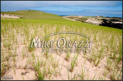 The Cape Cod National Seashore in Provincetown