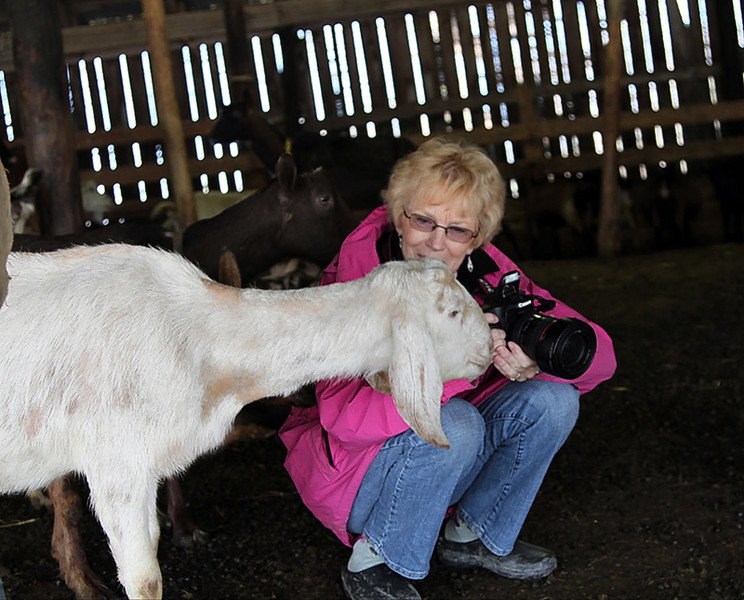 """This is me & my """"New Best Friend """" - they are so curious & gentle !"""