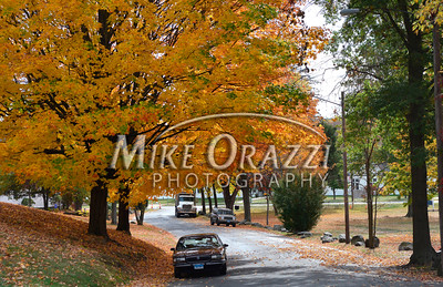 10/20/2016 Mike Orazzi | Staff Fall color in Plymouth's Baldwin Park Thursday.