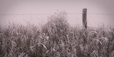 Fence in Heavy Fog Hoar Frost