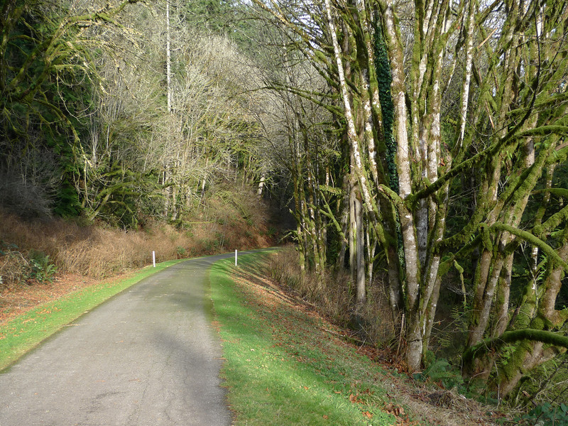 Paved trails are not my favorite for walking on, but at least this one had very light traffic.