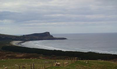 Otago Penninsula