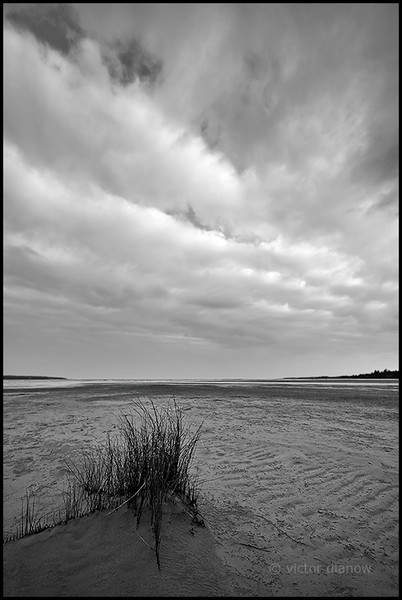 <h3>wind swept</h3> <h5>Canon 350xt, Sigma 10-20 at 10mm, Lee  0.9  hard grad,<br> 1/50s at f/5.6</h5>