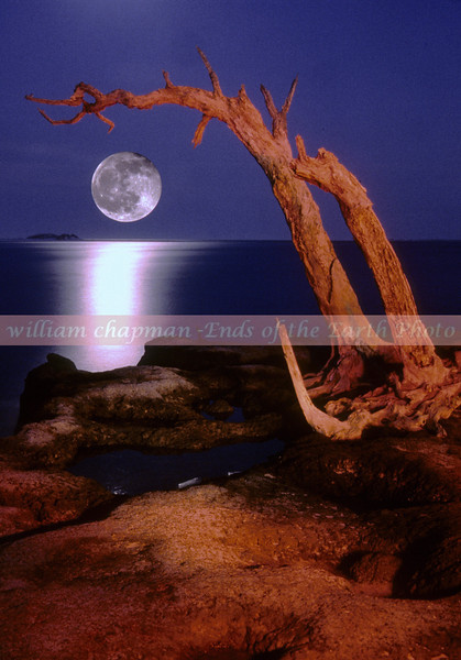 Moonrise Talbot Island Florida