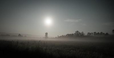 Foggy Full Moon Medow
