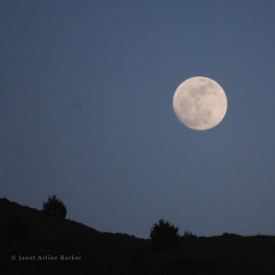 06-DSC_4973-moon