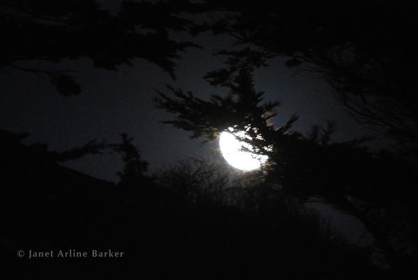 Pacifica-Super Moon-2012