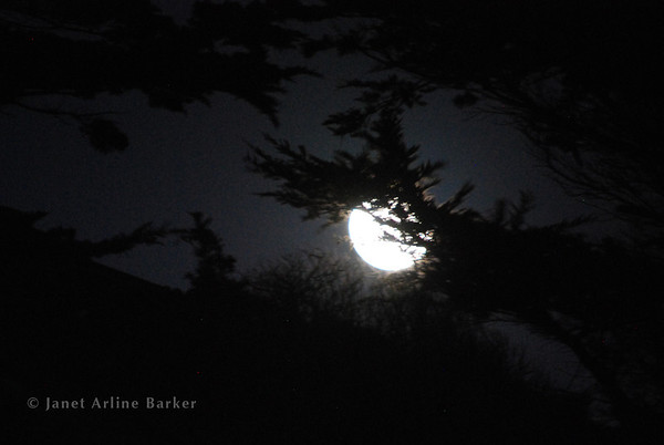 Pacifica-Super Moon-2012