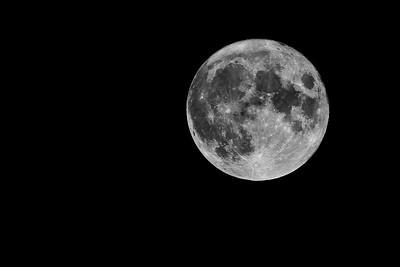 Buck Moon 2021
