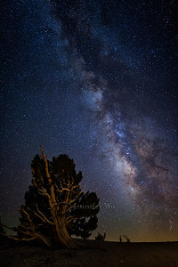 20130907_WhiteMountains_102