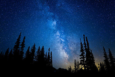 Beauty of the Stars Mount Rainer National Park, Washington 20090726-rainier