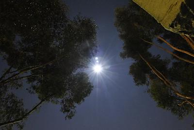 Full Moon San Diego