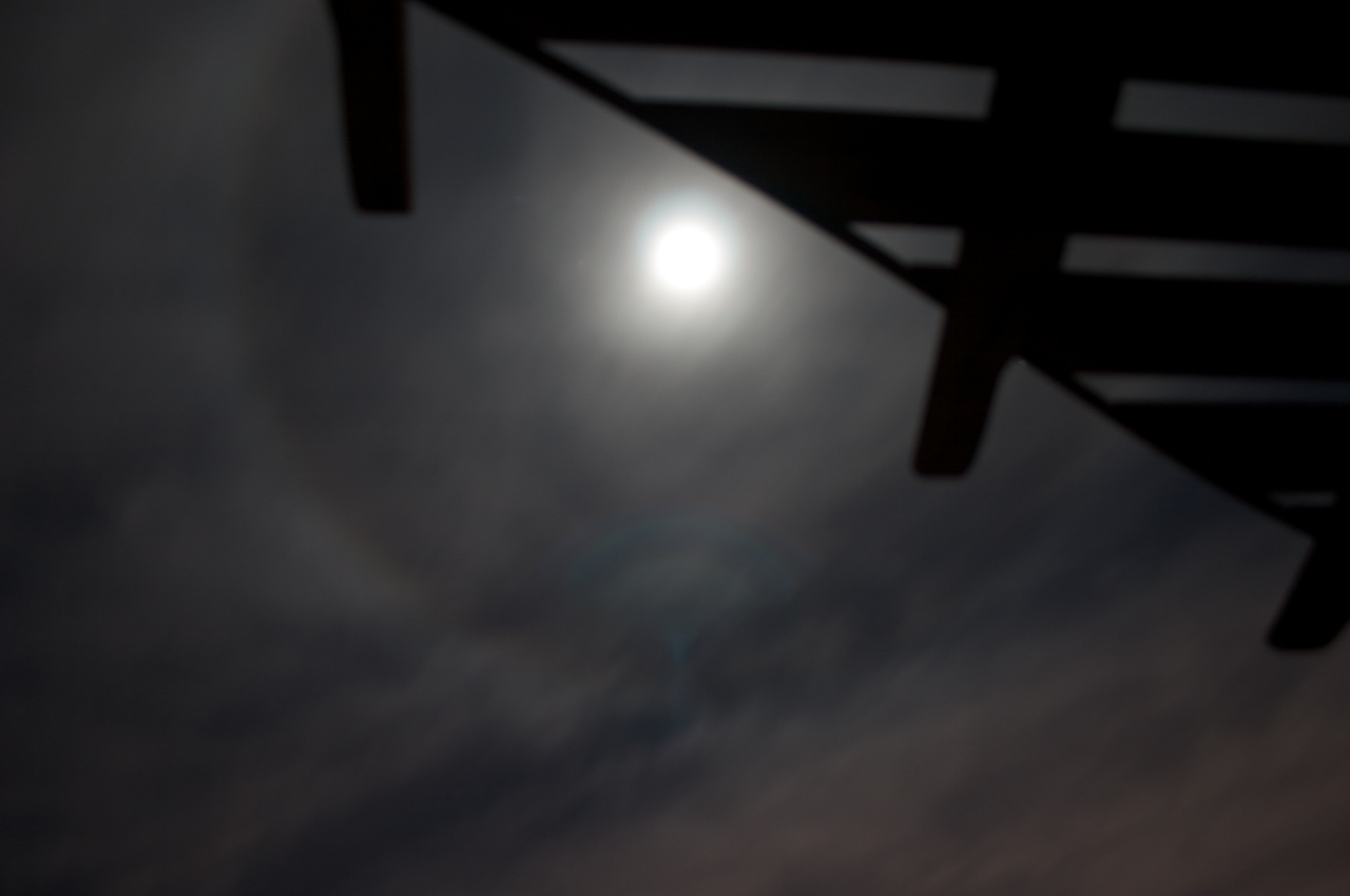 Halo Moon with Arbor