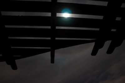 Moon Through Arbor