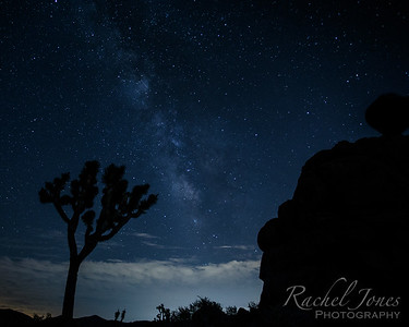 Milky Way - Joshua Tree