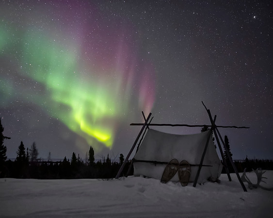 Wapusk National Park Northern Lights Aurora