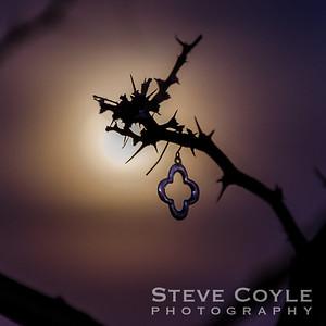 Moonlight Cross