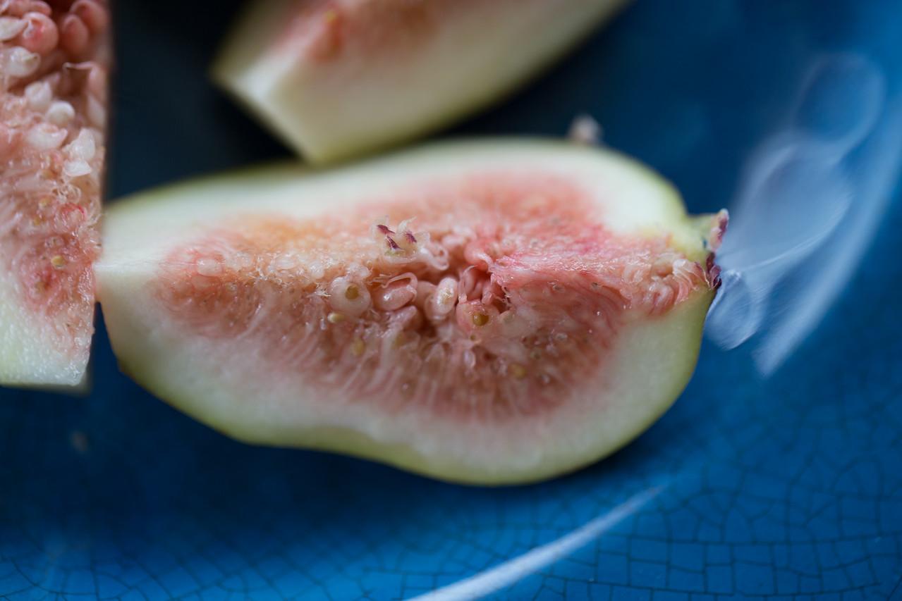 Brown Turkey fig, Ficus carica cv. Brown Turkey, a cultivated plant in Hawai`i