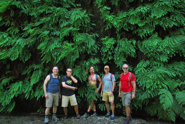 Redwood Natl & State Parks: Jun 22-25, 2017
