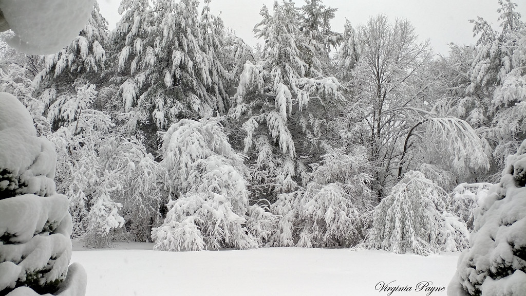 The next day - after the nor'easter! Photo taken again from our front door.