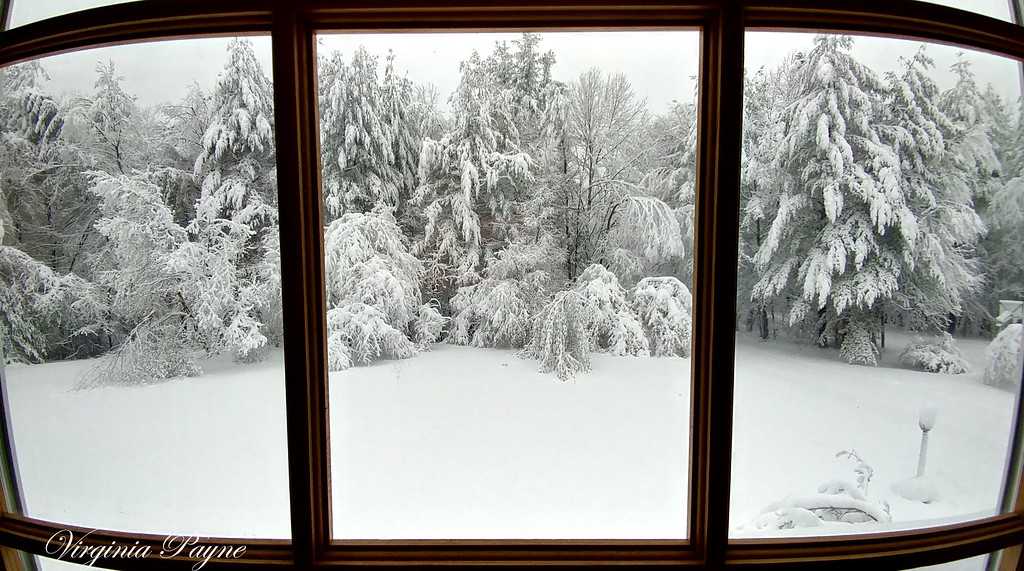 """A """"View from the window"""" - 3/8/18."""