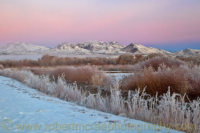 """Sunrise at Bosque del Apache"" - Award Winner"