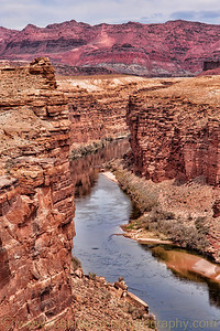 """The Colorado River and The Vermillion Cliffs"""