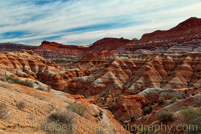 """Paria Canyon II"""