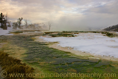 """Mammoth Hot Springs"" - Award winner"