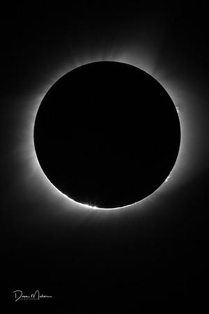 Eclipse_Day_in_Leasburg-20170821-0273