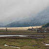 Mid May snow squall in Lamar Valley