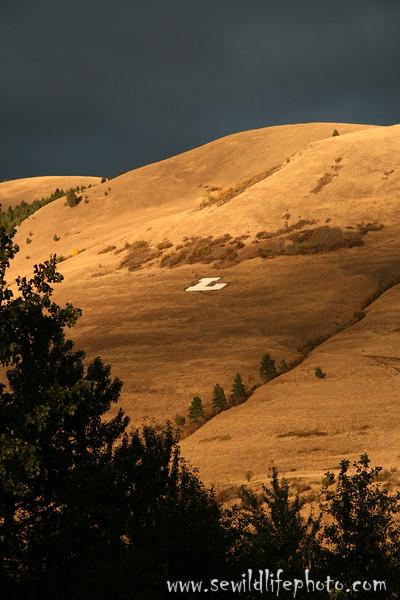 Mount Jumbo, Missoula, Montana