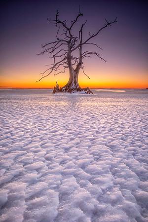Vanilla Ice Ice Baby