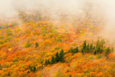 Colors of Halloween - View from Grandfather Mountain