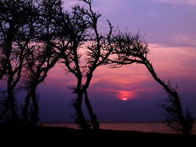 Eastern Shore Sunset