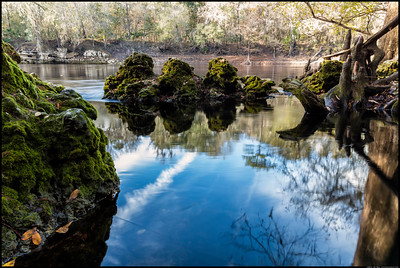 The same spring in the Suwanee River State Park I try to capture every year I'm home. This is from the back, inches above the pool where the spring bubbles up.