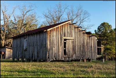 Late afternoon lighting hitting an old barn on the west side of Madison County, Florida.