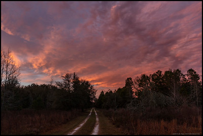 North Florida Winter sunset over a country lane.