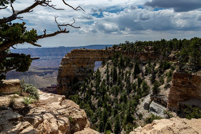 North Rim Grand Canyon 6-27-19_V9A6946