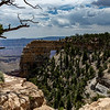 North Rim Grand Canyon 6-27-19_V9A6946
