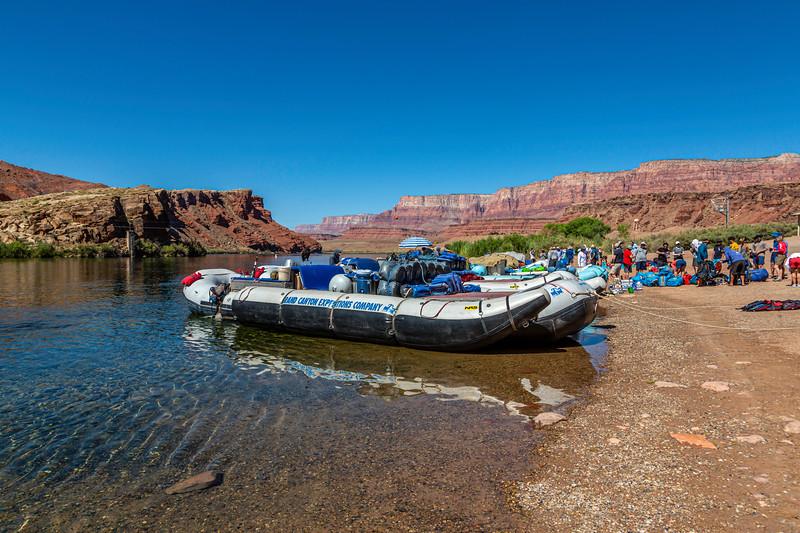 Colorado River-Lee's Ferry 6-27-19_V9A6834