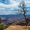 North Rim Grand Canyon 6-27-19_V9A6931