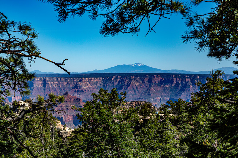 North Rim GC-SF Peaks 6-27-19_V9A6725