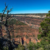 North Rim GC 6-27-19_V9A6736