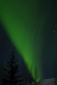 Aurora Borealis night 3, 1:41