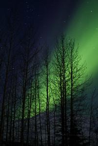 Aurora Borealis 12:48