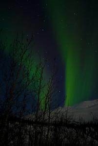 Aurora Borealis night 3 1:59