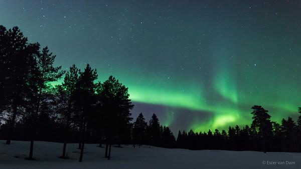 Aurora, Oulu  28-03-2017