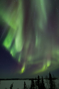 Aurora over Prosperous Lake, NWT, night of March 8, 2013